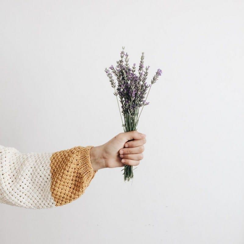 10+1 Καλοκαιρινά φυτά για τη βεράντα σου