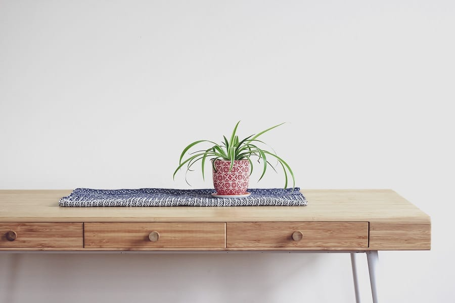 Plants Guide: Φυτά για το ευ ζην