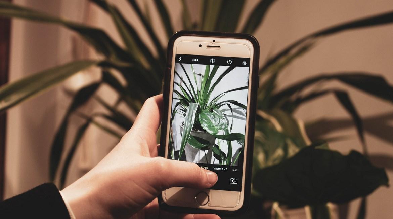 Νίκος Ζήκος: #ΜένουμεΣπίτι και φωτογραφίζουμε ό,τι βρούμε