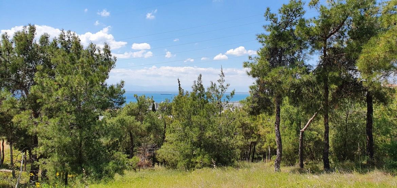 5 ιδέες για δραστήριες εξορμήσεις στη Θεσσαλονίκη